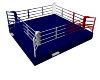 Ring-boxe-plancher 50cm