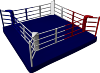 Ring-boxe-plancher 30cm