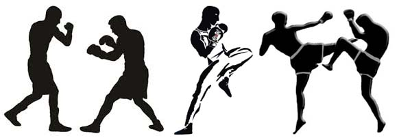 Boxe-savate-boxe thai-kick boxing
