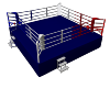 Boxing-ring-competition